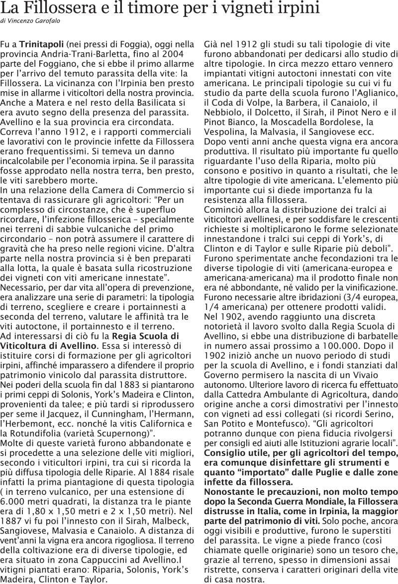 la-fillossera-a-cairano-1-4